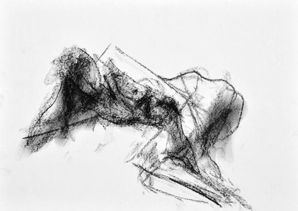 Compressed charcoal on paper 18 x 14 inches £310